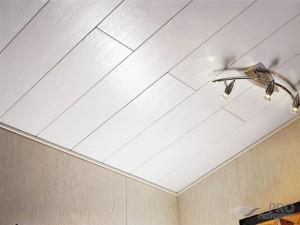 Потолок пвх на кухне своими руками фото 180